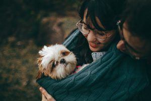 Discover Why Baby Talk Is Key to Puppy Love with Your Dog