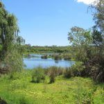 Yanchep National Park-Perth