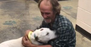 Homeless Man Dog And His Lost Best Friend Have The Most Joyful Reunion