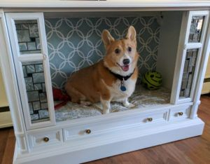 Dog Owner Reconstructs Old TV To Make Upscale Dog Bed