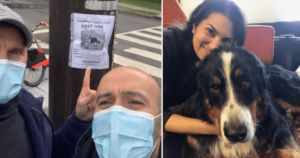 Neighbors Come Together During Pandemic To Find Missing Dog