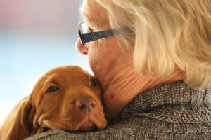 10 Dog Breeds That Make Wonderful Companions For Seniors