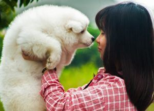 Science Explains How Your Dog REALLY Feels About You