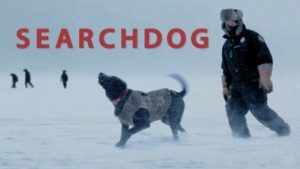 Indie Film SEARCHDOG Captures Real Bond Between Humans and Dogs