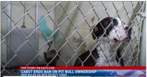 Arkansas City Finally Ends Ban on Pit Bulls.With a Catch